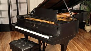 Steinway pianos for sale: 1928 Steinway Grand D - $113,100