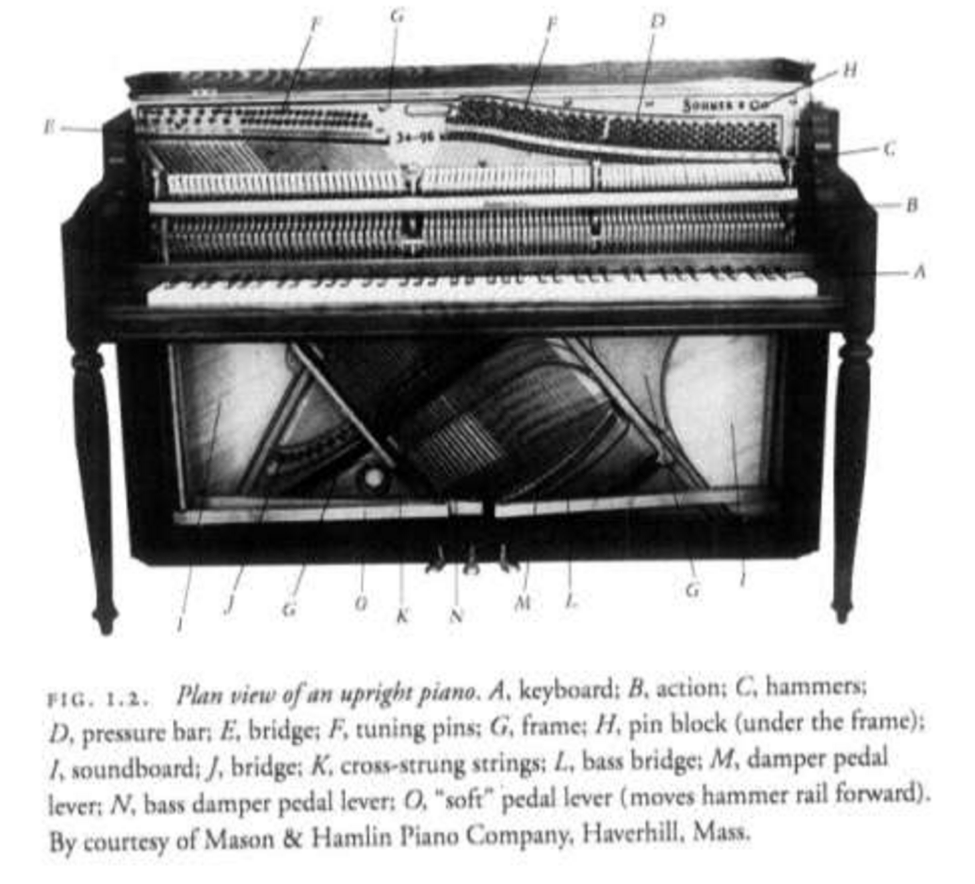 evolution of the piano essay In this essay i am going to discuss the evolution of jazz music, from its beginnings in african culture to its many forms in the twenty first century i have focused on styles/ genres, instruments, ensembles, technology, composers (both classical and popular), and musicals.